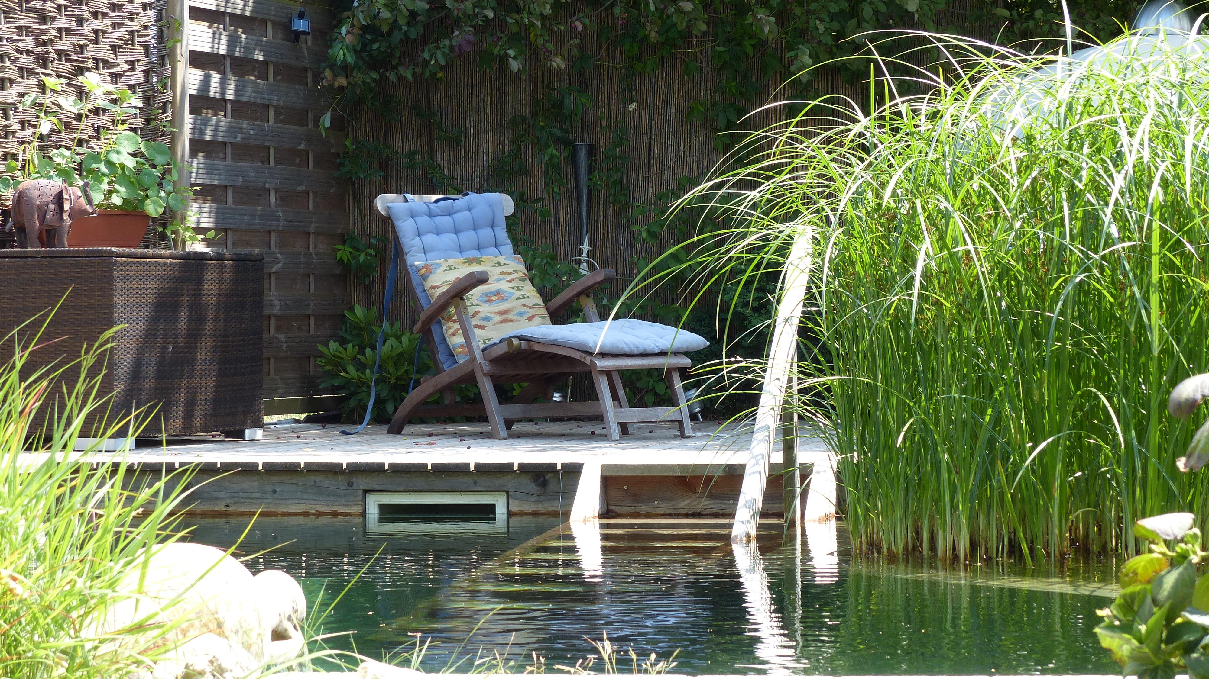 Swimming Pond Benefits