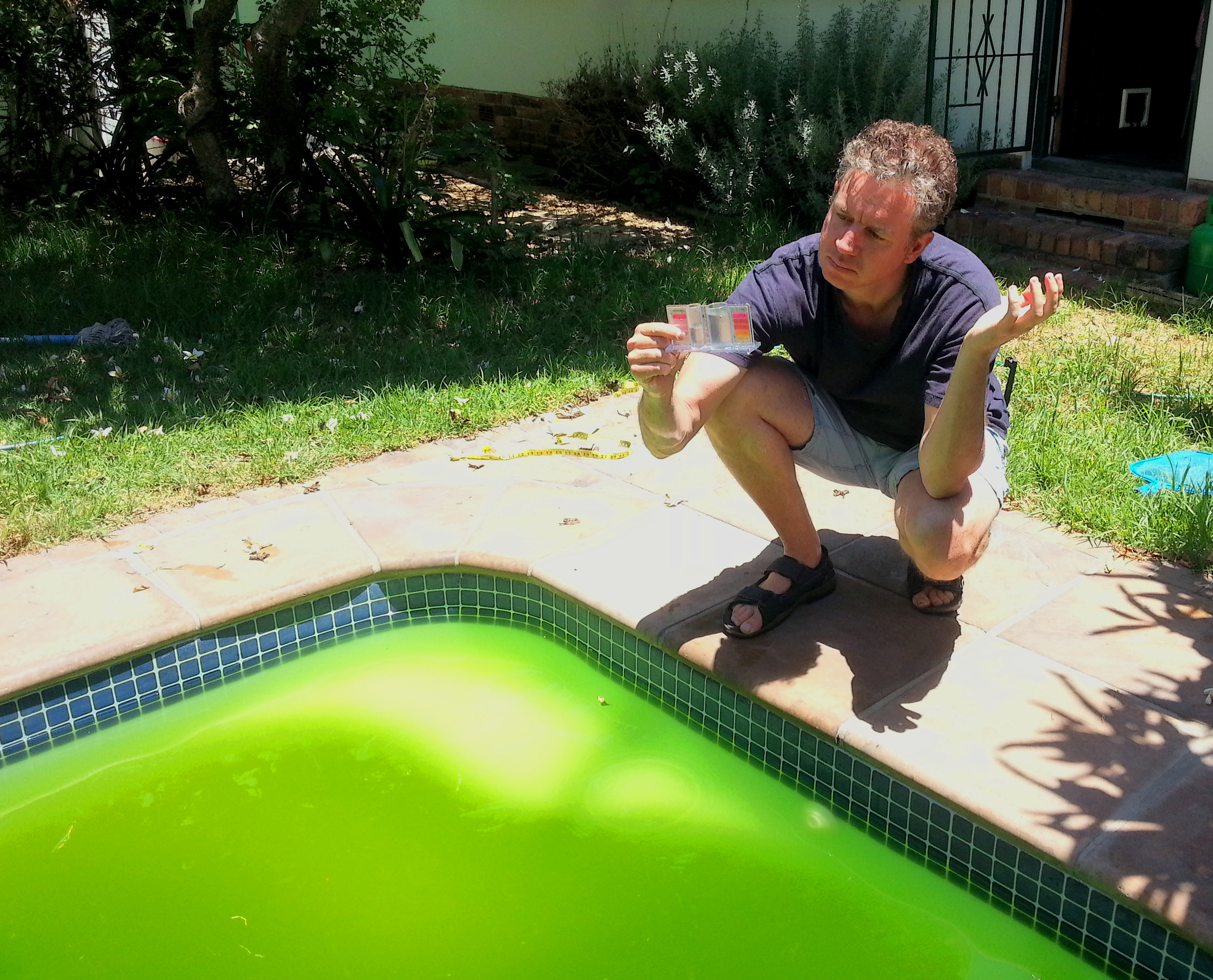 Green Pool Cleaning Tips